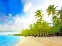 PACK Paradise (especial luna de miel)