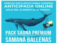 Pack Saona Premium / Samaná Ballenas