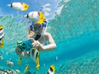 Snorkel en Cabeza de Toro